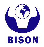 BISON Advanced Technology Corp., Ltd